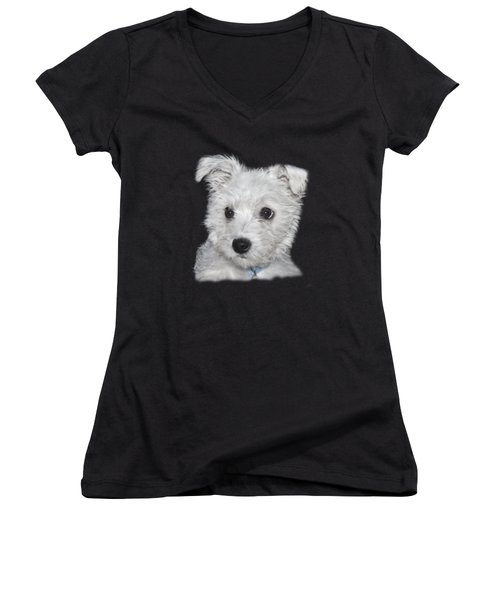 Alert Puppy On A Transparent Background Women's V-Neck T-Shirt (Junior Cut) by Terri Waters