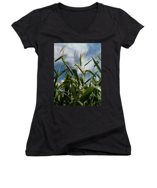 All About Corn Women's V-Neck T-Shirt (Junior Cut)