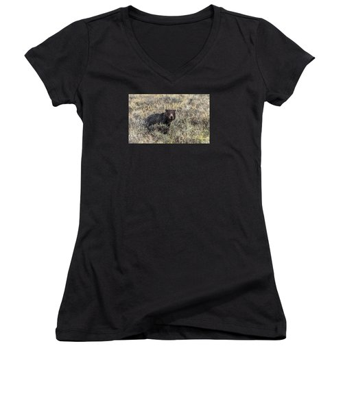 Women's V-Neck T-Shirt (Junior Cut) featuring the photograph All Alone by Yeates Photography