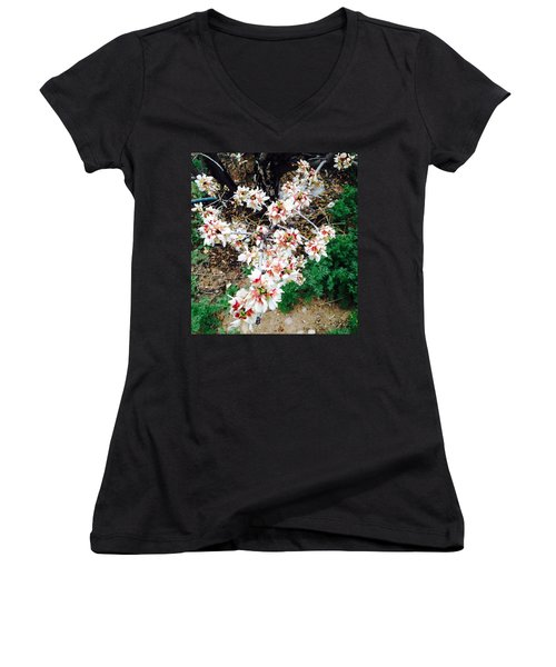 Almond Blossoms Women's V-Neck T-Shirt