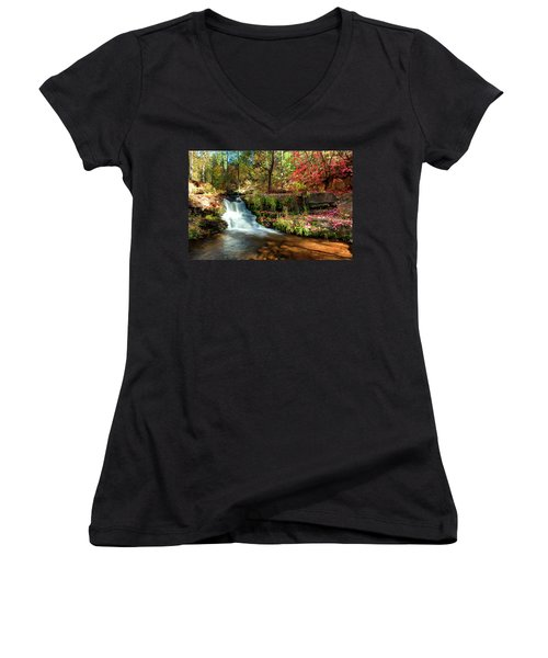 Along The Horton Trail Women's V-Neck T-Shirt (Junior Cut) by Anthony Citro