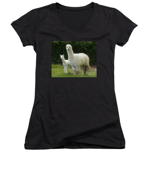 Alpaca And Foal Women's V-Neck (Athletic Fit)