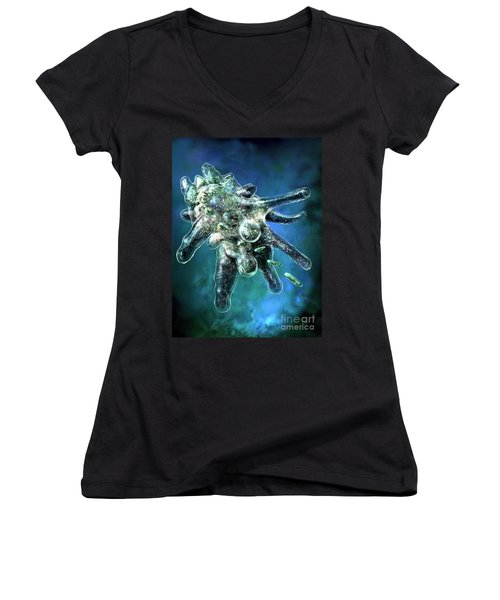 Amoeba Blue Women's V-Neck (Athletic Fit)