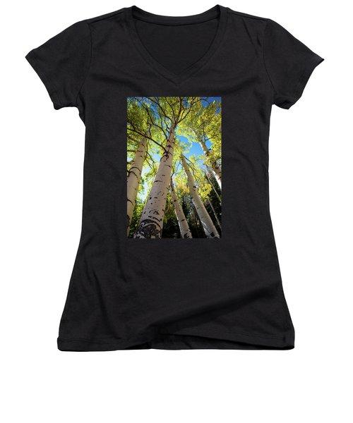 Aspen Dance Women's V-Neck T-Shirt (Junior Cut) by Dana Sohr