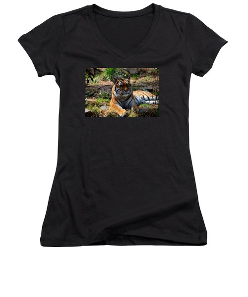 Women's V-Neck T-Shirt (Junior Cut) featuring the mixed media Amur Tiger 10 by Angelina Vick
