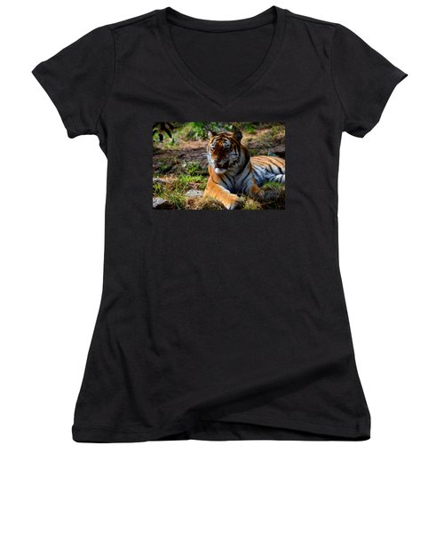 Women's V-Neck T-Shirt (Junior Cut) featuring the mixed media Amur Tiger 5 by Angelina Vick