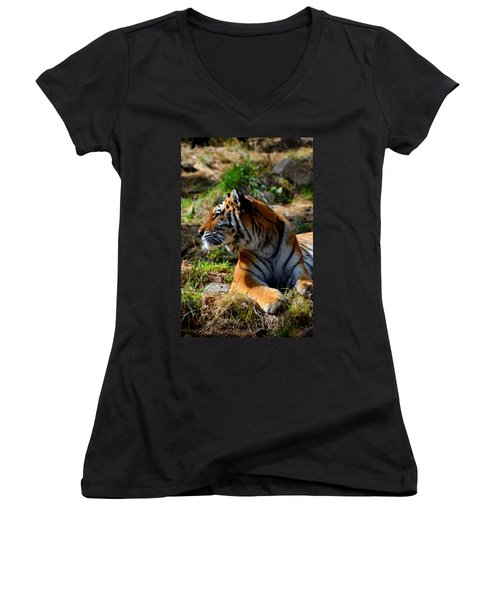 Women's V-Neck T-Shirt (Junior Cut) featuring the mixed media Amur Tiger 9 by Angelina Vick