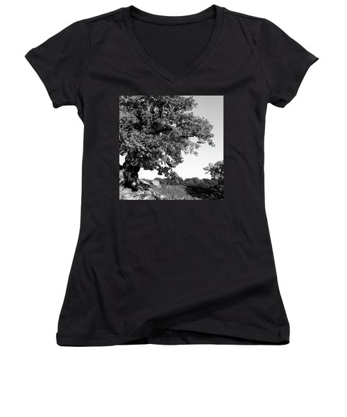 Ancient Oak, Bradgate Park Women's V-Neck T-Shirt (Junior Cut) by John Edwards