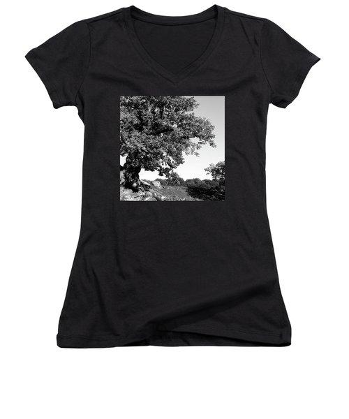 Ancient Oak, Bradgate Park Women's V-Neck T-Shirt