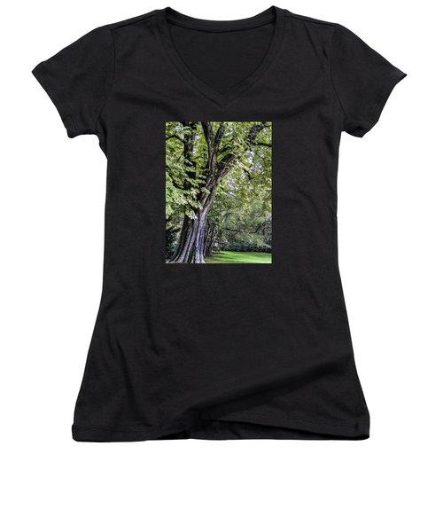 Ancient Tree Luxembourg Gardens Paris Women's V-Neck T-Shirt