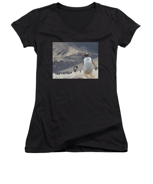 Antarctic Magesty Women's V-Neck (Athletic Fit)