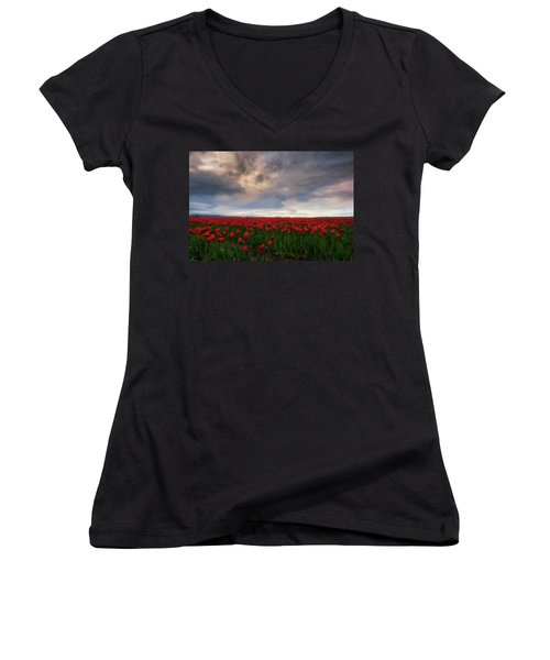 April Showers Women's V-Neck T-Shirt (Junior Cut) by Ryan Manuel