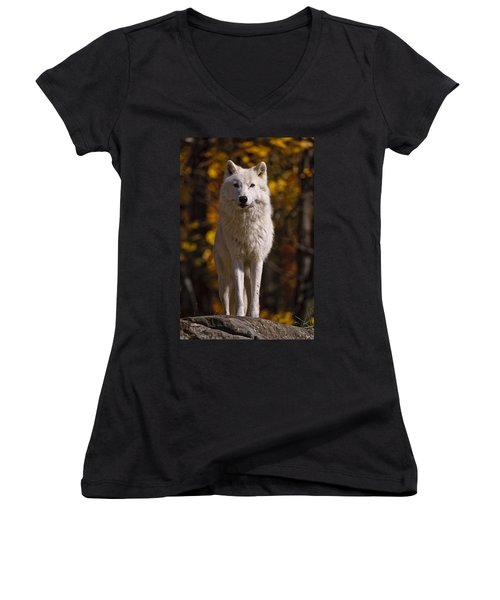 Women's V-Neck T-Shirt (Junior Cut) featuring the photograph Arctic Wolf On Rocks by Michael Cummings