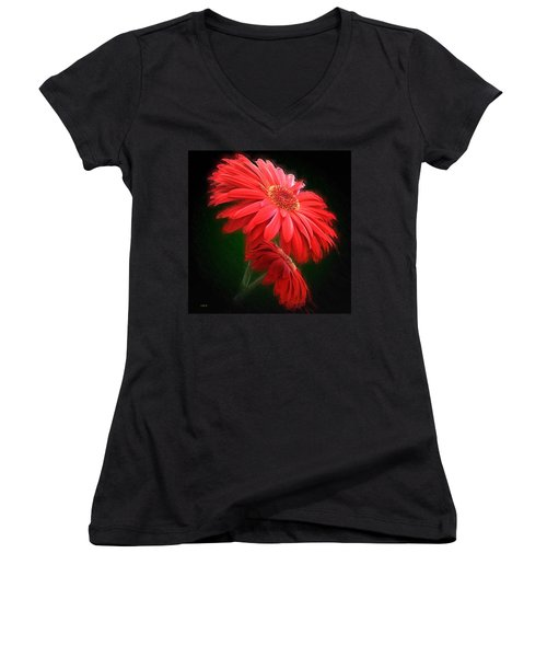 Artistic Touch Women's V-Neck (Athletic Fit)