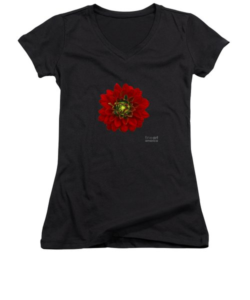 Red Dahlia Women's V-Neck T-Shirt (Junior Cut) by Michael Peychich