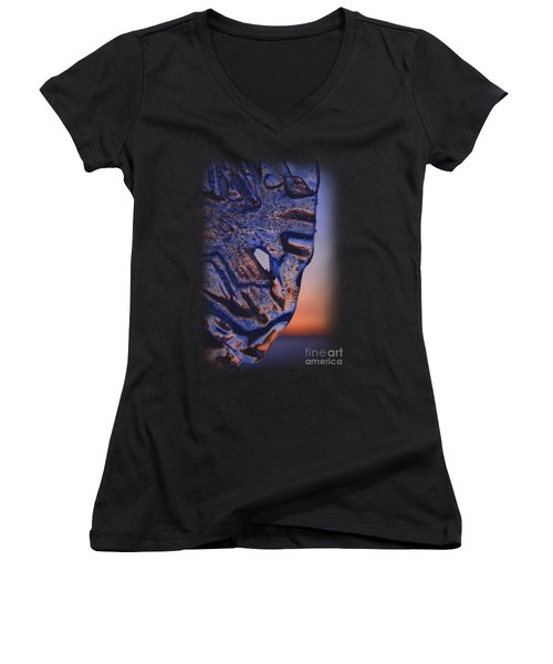 Ice Lord Women's V-Neck T-Shirt (Junior Cut) by Sami Tiainen