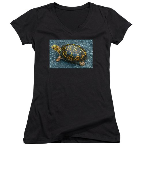 Turtle Women's V-Neck