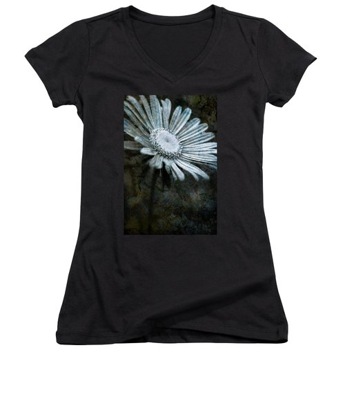 Aster On Rock Women's V-Neck