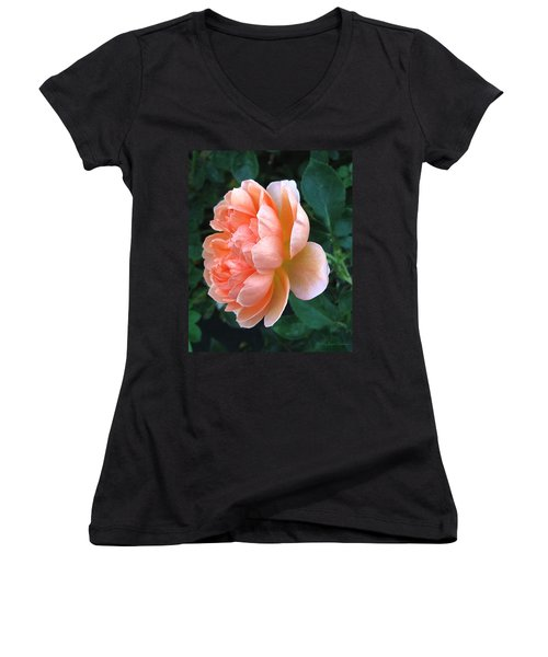 Women's V-Neck T-Shirt (Junior Cut) featuring the photograph August Rose 09 by Joyce Dickens