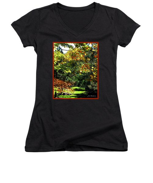 Women's V-Neck T-Shirt (Junior Cut) featuring the photograph Autumn Backyard by Joan  Minchak