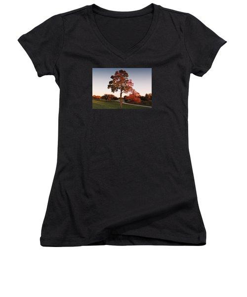 Autumn Beauty Women's V-Neck T-Shirt (Junior Cut) by Milena Ilieva
