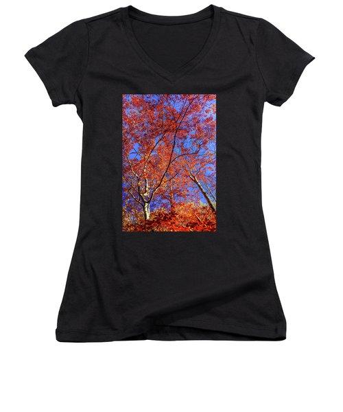 Autumn Blaze Women's V-Neck T-Shirt (Junior Cut) by Karen Wiles