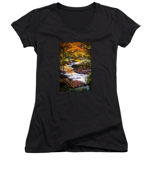 Autumn Cascade  Women's V-Neck T-Shirt (Junior Cut) by Parker Cunningham