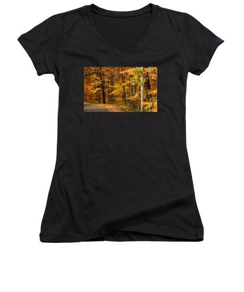 Autumn Colors Women's V-Neck