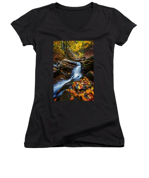 Autumn In The Catskills Women's V-Neck (Athletic Fit)