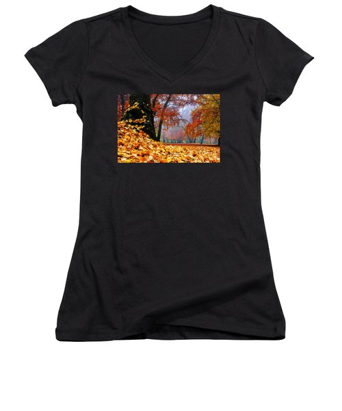 Autumn In The Woodland Women's V-Neck T-Shirt