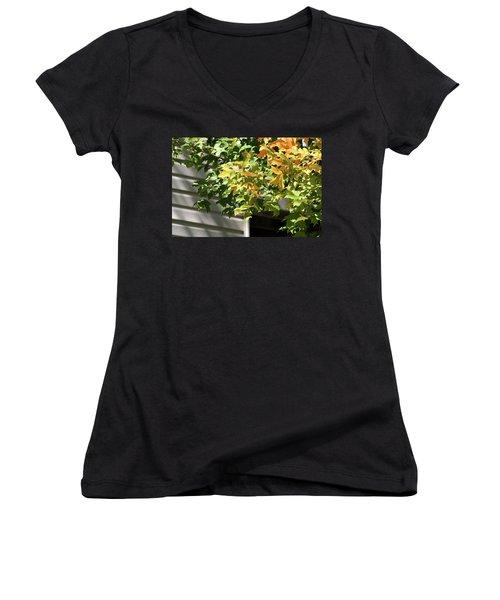 Autumn Leaves Against White Women's V-Neck T-Shirt