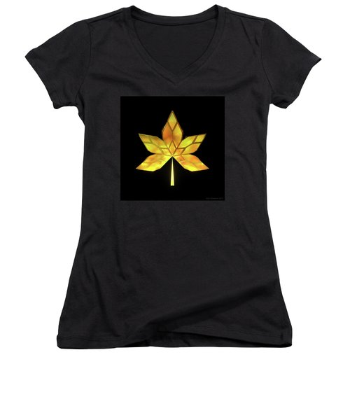 Autumn Leaves - Frame 070 Women's V-Neck T-Shirt