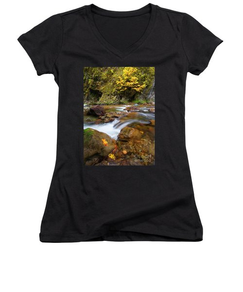 Women's V-Neck T-Shirt (Junior Cut) featuring the photograph Autumn Moment by Mike Dawson