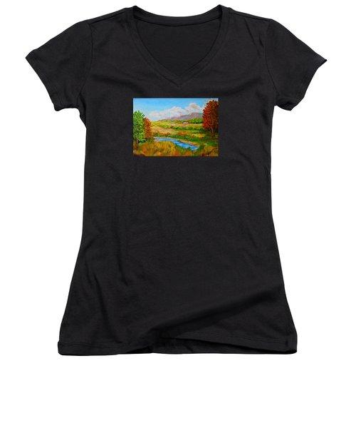 Autumn Nature Women's V-Neck T-Shirt