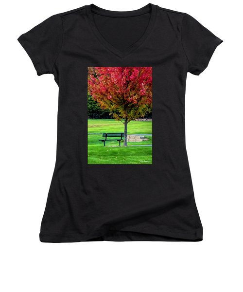Autumn Park Women's V-Neck T-Shirt
