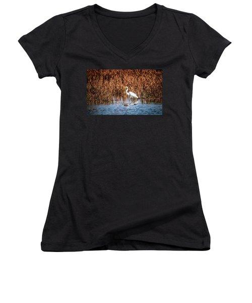 Autumn's Shore Women's V-Neck T-Shirt (Junior Cut) by Ray Congrove