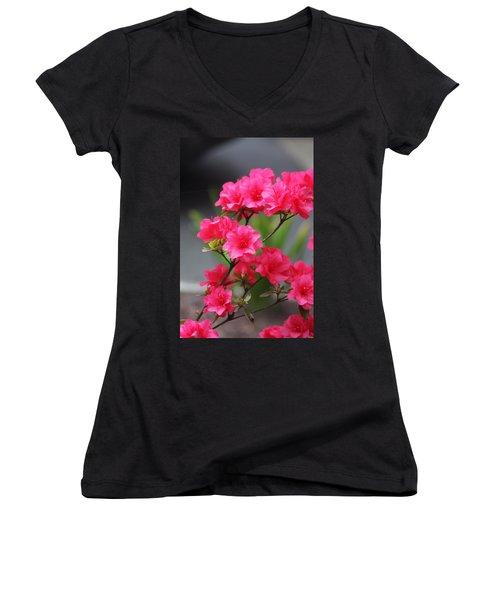 Women's V-Neck T-Shirt (Junior Cut) featuring the photograph Azalea by Vadim Levin