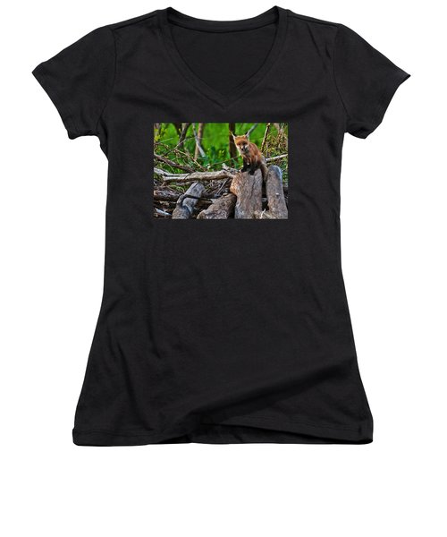 Baby Fox Women's V-Neck (Athletic Fit)