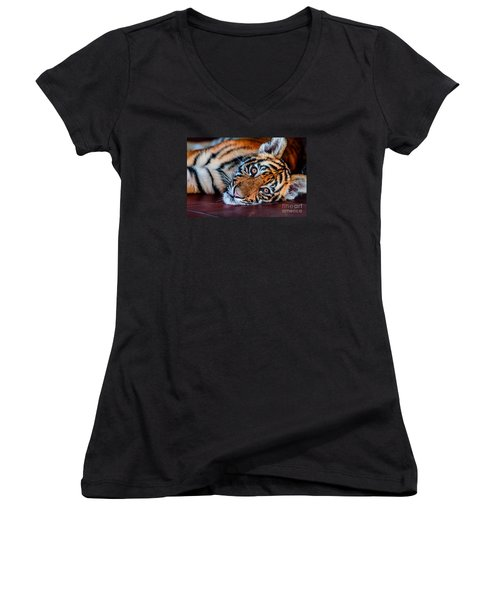 Baby Tiger Women's V-Neck (Athletic Fit)
