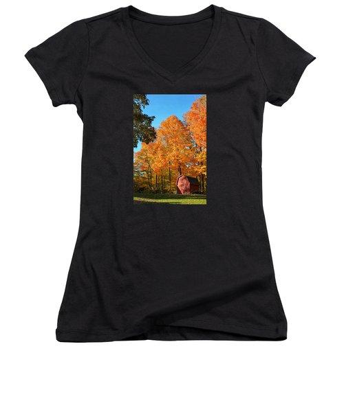 Backyard Beauty Women's V-Neck T-Shirt (Junior Cut) by Nikki McInnes