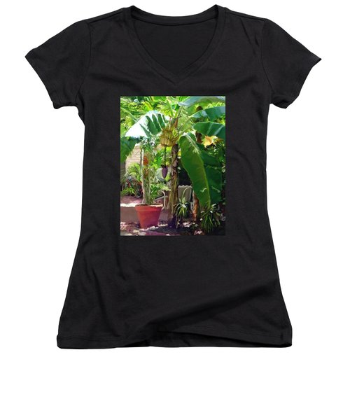 Banana Tree Women's V-Neck T-Shirt (Junior Cut) by David  Van Hulst