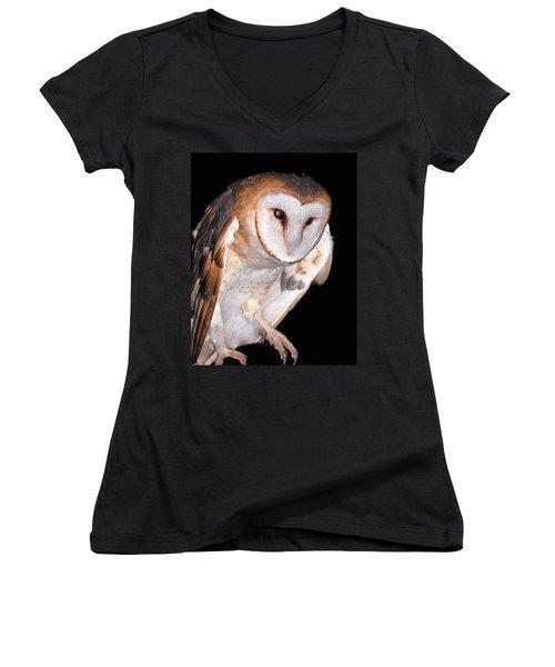 Barn Owl Women's V-Neck T-Shirt (Junior Cut) by Jean Noren