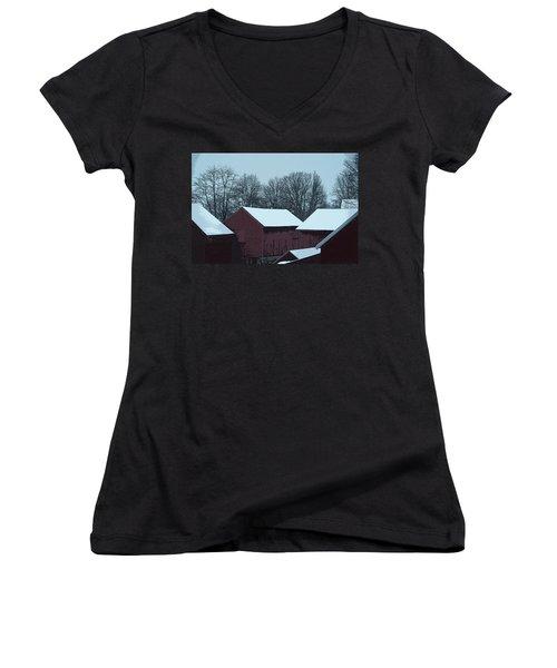 Barnscape Women's V-Neck T-Shirt