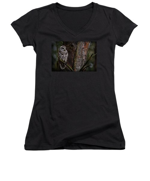 Women's V-Neck T-Shirt (Junior Cut) featuring the photograph Barred Owl In Pine Tree by Michael Cummings