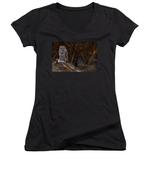 Women's V-Neck T-Shirt (Junior Cut) featuring the photograph Barred Owl On Log by Michael Cummings