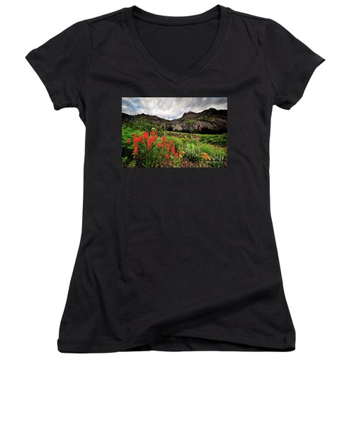 Basin Brushes Women's V-Neck T-Shirt