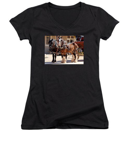 Bay Colored Clydesdale Horses Women's V-Neck (Athletic Fit)