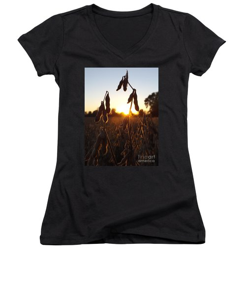 Beans At Sunset Women's V-Neck (Athletic Fit)