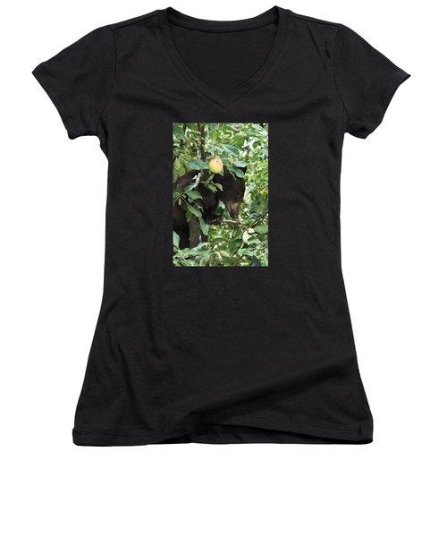 Bear Cub In Apple Tree5 Women's V-Neck T-Shirt (Junior Cut) by Loni Collins