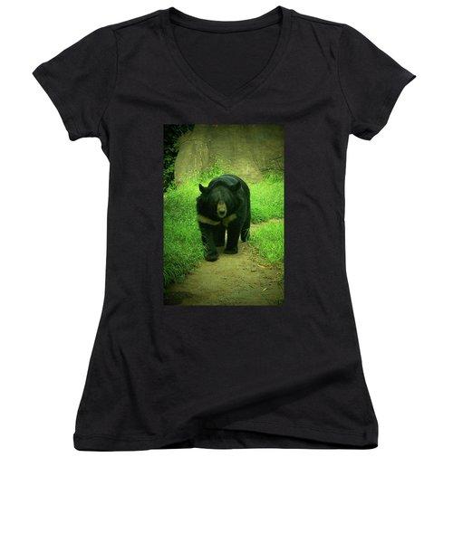 Bear On The Prowl Women's V-Neck T-Shirt (Junior Cut) by Trish Tritz